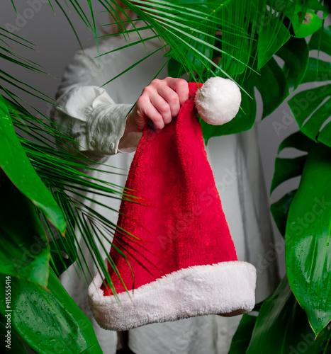 Woman in white shirt show Santa Claus hat near palm leaves. © Masson