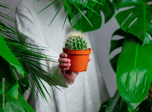 Woman in white shirt show cactus near palm leaves. © Masson