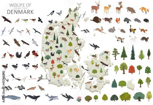 Fototapeta Isomatric 3d design of Denmark wildlife