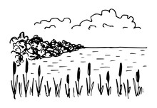 Simple Hand-drawn Vector Drawing In Black Outline. Lake Shore, Reeds, Calm Water, Trees, Clouds. Nature, Landscape, Duck Hunting, Fishing.