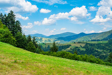 Meadow Covered With Grass On A Background Of Mountains And Forests.