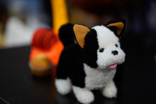 Black White Dog Toy In The Dust