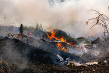 Fire Flame Burning Garbage Spreads Over The Grassy Forest While Emitting Smoke Air Pollution, Air Pollution Concept. Focusing On Bonfire.
