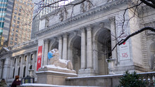THE NEW YORK PUBLIC LIBRARY LION MASK