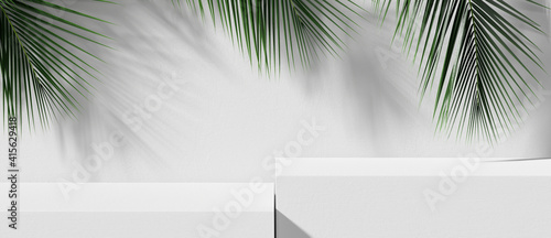 Obraz White stone product display podium with nature leaves. 3D rendering  - fototapety do salonu