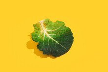 Cabbage Leaves On Yellow Background. Savoy Cabbage In Sunlight With Hard Shadow. Garden, Spring, Summer, Grow Concept