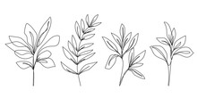 Continuous Line Drawing Set Of Plants Black Sketch Of Flowers Isolated On White Background. Flowers One Line Illustration. Minimalist Prints Set. Vector EPS 10.