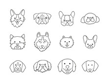 Set Of Heads Of Different Breeds Dogs Corgi, Pug, Chihuahua, Terrier, Retriever, Dachshund, Poodle. Collection Of Dog Faces. Hand Drawn Isolated Vector Illustration In Doodle Style On White Background