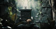 Precious Hidden Treasure In The Tropical Jungle