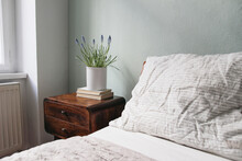 Bedroom Closeup View. Striped White And Beige Linen Pillows And Blanket. Wooden Bed And Night Stand. Blooming Muscari Plant In White Flower Pot. Books On Retro Bedside Table. Elegant Interior.