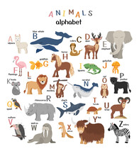 Vector Letters Of The Alphabet With Cute Animals For Kids Education