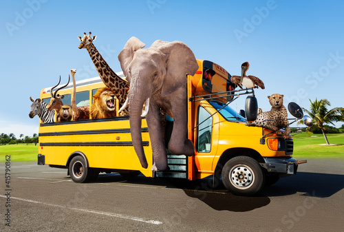 Fototapeta premium Zoo in the school bus concept with animals looking out of the windows, Elephant giraffe cheetah and others