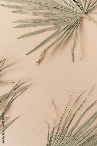 Obraz na plátně Closeup of dry tropical palm leaf