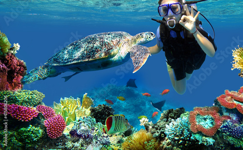 diver girl and turtle underwater © Happy monkey