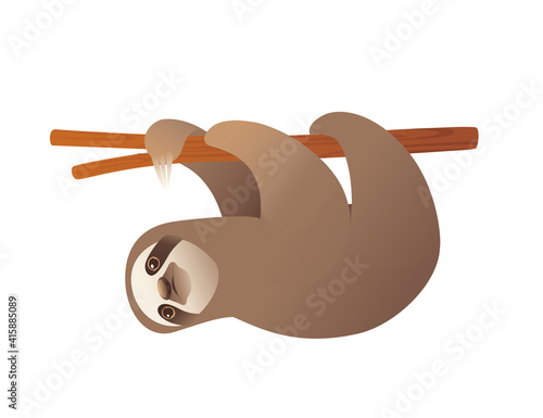 Fototapeta premium Sloth hanging on a branch cartoon animal design vector illustration on white background