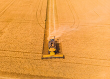 Combine Harvester On The Field Of Wheat. Perfect Summer View From Flying Drone Of Harvesting Wheat On Sunset.