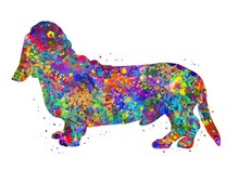 Basset Hound Dog Watercolor, Abstract Painting. Watercolor Illustration Rainbow, Colorful, Decoration Wall Art.