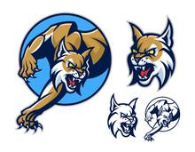 Stylized Lynx Emblem Set. Vector Illustration.