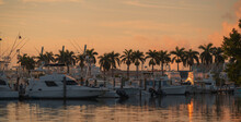 Sunset At The Marina Boats Palms Caribbean Summer
