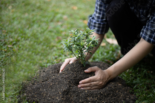 Canvas Print Young man transplanted small seedlings into mineral rich potting soil and prepar