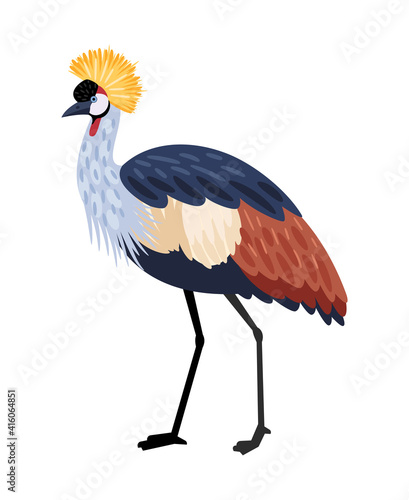 Fototapeta premium Bird with long legs. Cartoon colored exotic character of nature with beak and feathers, vector illustration of crested crane isolated on white background