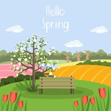Spring Landscape With Bench, Blooming Tree, Tulips, Field, Nature. Greeting Card Design. Hello Spring. Stock Vector Illustration In Flat Style.