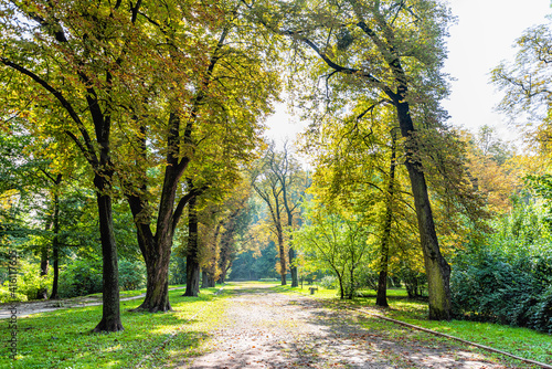 Photo Lviv, Ukraine Ukrainian city old town with alley path in park during summer day