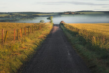 Countryside Landscape In Stonehaven, Scotland Of An Old Empty Country Road Leading To A Bank Of Misty Fog And Rolling Hills With Golden Sunrise Light.