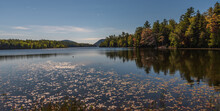 A Quiet Lake In Bar Harbor