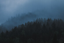 Foggy Blues Over Tree-covered Mountains In Northern Sweden
