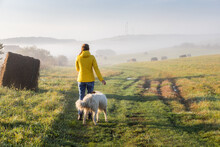 Woman With Dog Walking In Early Morning Foggy Landscape