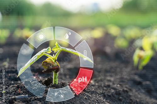 Smart farm technology for detection and control system of Plant sprout growing with red alert icon of pH. Innovation technology for agriculture 4.0