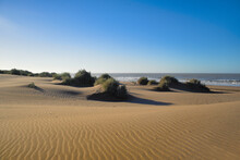 Sand Dunes With Vegetation On A Beach On The Shores Of The Atlantic Ocean