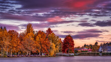 The Trees Are Dressed To Autumn Colors On The Tiny Island Of The Boating Lake In Szombathely, Hungary Shot During The Twilight When The Clouds Were Painted Purple And Orange Colors
