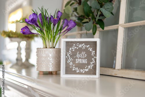 Fotografie, Obraz Spring decor on the mantel
