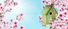 Beautiful Wooden Bird House Hanging On Blossoming Tree Outdoors, Banner Design. Springtime