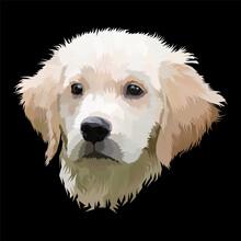 Animal Print Pop Art Portrait Premium Vector Isolated Decoration