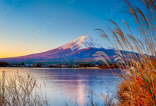 Fotografie, Obraz Mount Fuji in The Early Morning At Kawaguchiko Lake With Sedge Grass In Foreground in Japan