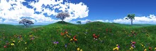 Spring Meadow With Flowers, Green Hills, Sky With Clouds Over A Meadow With Flowers, Hills In The Grass