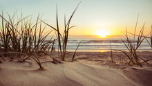 Sunset On The Beach | Sand Dunes At Sunset | Sunset In The Sand