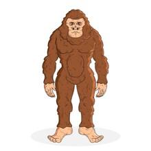 Realistic Hand Drawn Bigfoot Sasquatch Illustration 2