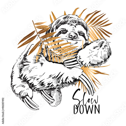 Fototapeta premium Cute smiling Sloth with a gold palm leaves. Slow down - lettering quote. Elegant poster, t-shirt composition, hand drawn style print. Vector illustration.