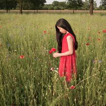 Girl In Poppy Field Wearing A Red Dress
