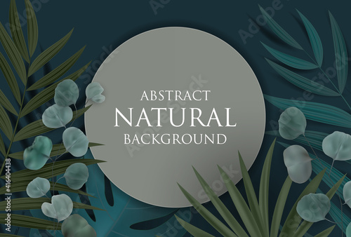 Abstract Natural Background with Tropical Palm, Eucalyptus,Monstera Leaves and frame. Vector Illustration © yganko