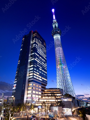 Fototapeta premium ライトアップされた、夕暮れの東京スカイツリー。2021年2月、東京都墨田区にて撮影。