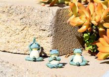 Three Frogs Doing Yoga
