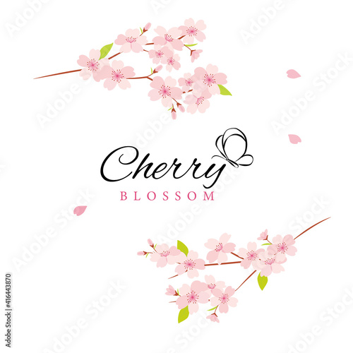 Canvastavla Vector cherry blossom flowers illustration