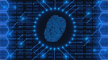 Fingerprint Logo - Abstract Background In Blue Of 4-digit Binary Code Behind Information Connecting Lines Between Honeycomb Elements - Security Scanning Identification By Biometric Authorization