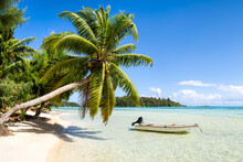 Beautiful Beach With Palm Tree On A Tropical Island