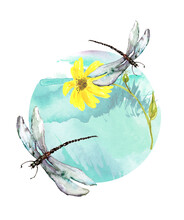 Watercolor Round Logo With Yellow Flower On The Background Of  Grass, Meadow. Watercolor Card, Postcard, Invitation.Round Isolated Element.Summer Landscape. The Dragonfly Flies. Moth, Butterfly